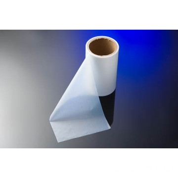 T0.20 Oriented PTFE Film